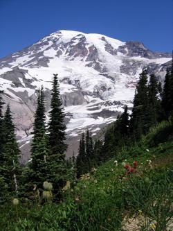 Mt-Rainier